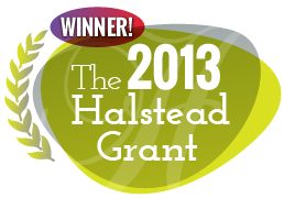 2013 halstead grant winner sculpturings (rebecca rose)